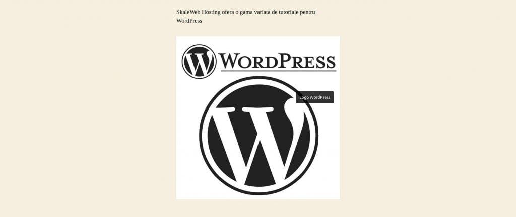 Title Attribute WordPress